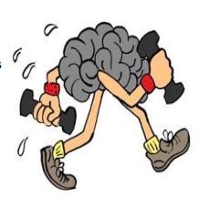 Quand le sport muscle le cerveau
